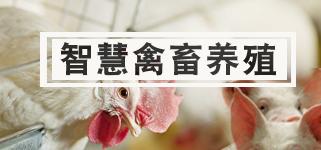智慧畜牧养殖解决方案