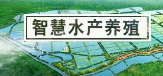 智慧水产养殖解决方案