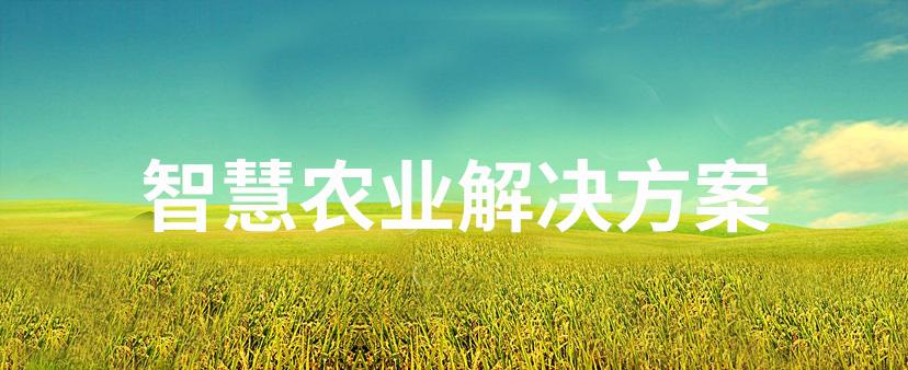 智慧农业解决方案-精讯畅通