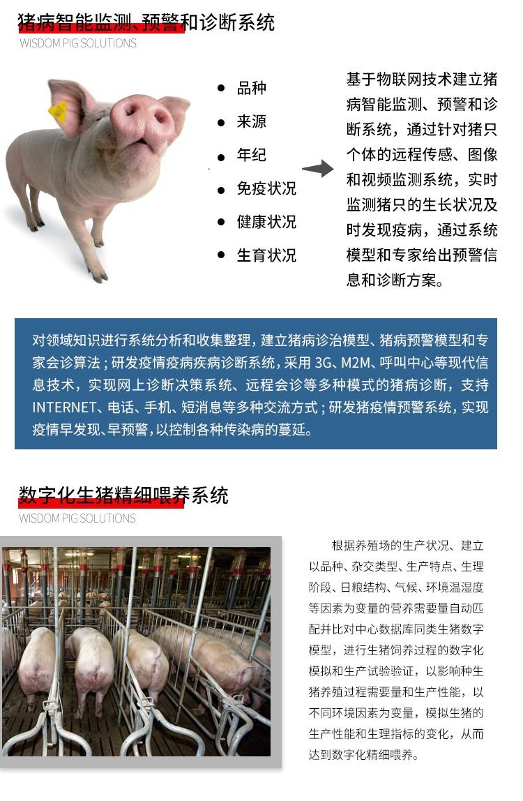 精讯畅通智慧养猪解决方案