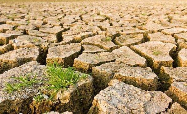 土壤污染带来的危害