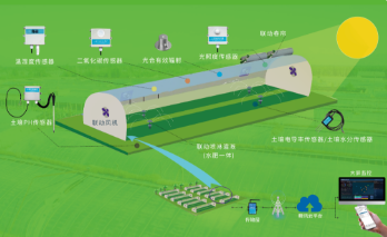 智慧灌溉+水肥一体化