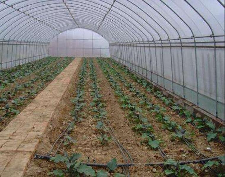 农业大棚灌溉